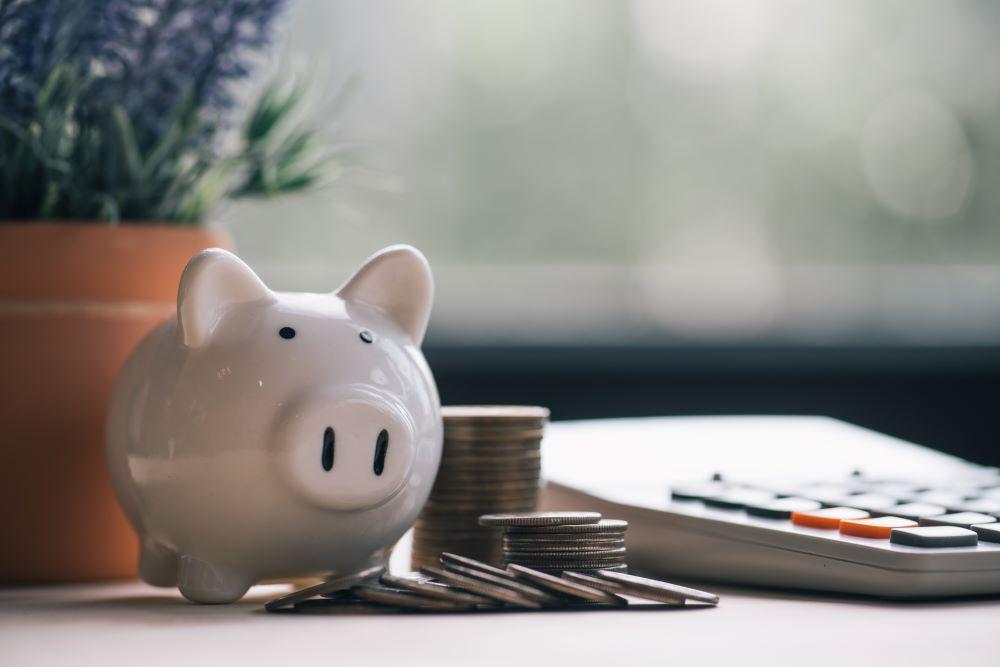 Investissement-Alternatifs-Conseils-Avant-Investir